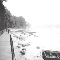 Sea Cliff, SG031.jpg